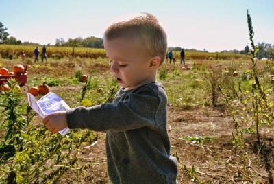 田舎で育つ子供